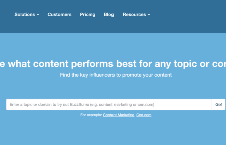Buzzsumo, a case study in success